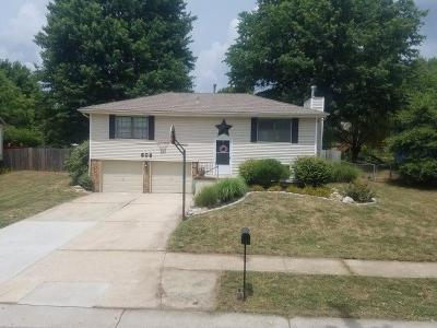Lee's Summit Single Family Home For Sale: 608 SW 35th Terrace