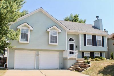 Lee's Summit Single Family Home For Sale: 1101 SE Meridian Drive