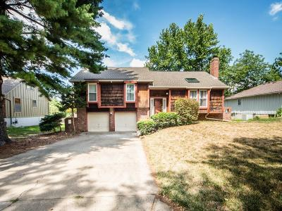 Shawnee Single Family Home Contingent: 13810 W 69th Street