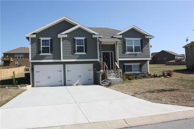 Single Family Home For Sale: 26164 W 142nd Terrace