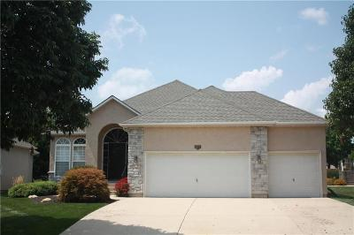 Olathe Single Family Home For Sale: 12002 S Valley Road