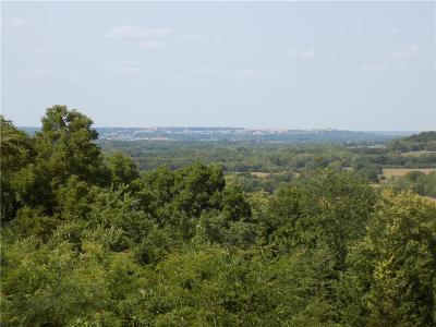 Douglas County Residential Lots & Land For Sale: 924 E 1300 Road
