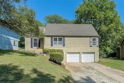 Single Family Home For Sale: 9247 Main Street