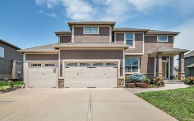 Blue Springs Single Family Home For Sale: 509 SW Lakeside Court