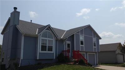 Gardner Single Family Home For Sale: 17361 S Agnes Drive
