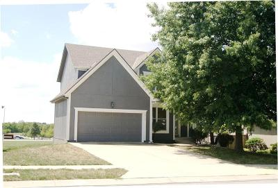 Olathe Single Family Home For Sale: 18317 W 117th Street