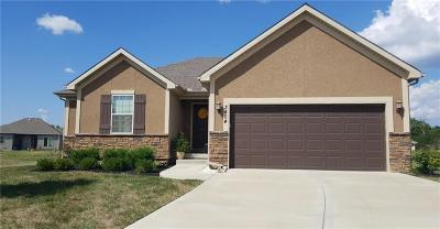 Platte County Single Family Home For Sale: 3404 NW 93rd Street