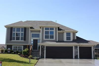 Kansas City Single Family Home For Sale: 6720 N Cypress Avenue