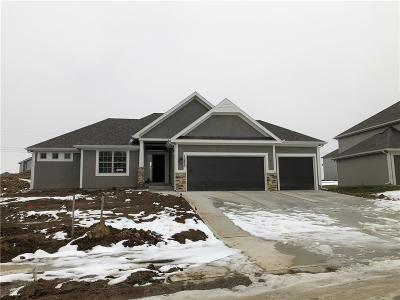 Kansas City Single Family Home For Sale: 10823 N Tracy Avenue