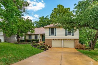 Kansas City Single Family Home For Sale: 728 W 121st Street