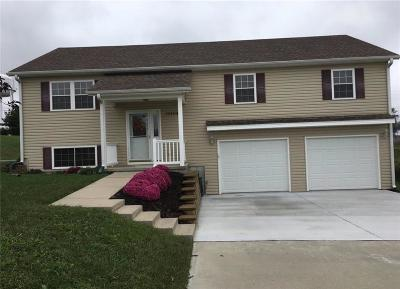 Andrew County Single Family Home For Sale: 10404 Apple Drive