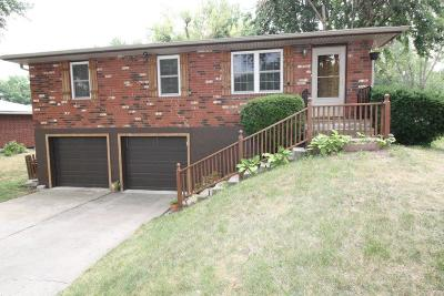 Excelsior Springs Single Family Home For Sale: 107 Celia Circle