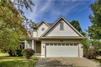 Single Family Home For Sale: 908 Regency Drive