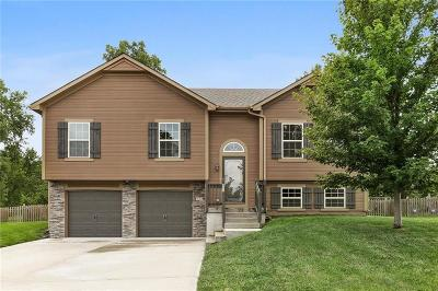 Raymore Single Family Home Show For Backups: 421 Wiltshire Drive