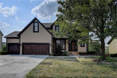 Overland Park Single Family Home For Sale: 14204 Hadley Street