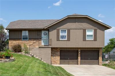 Clay County Single Family Home For Sale: 3712 NE 84th Terrace