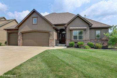 Kansas City Single Family Home For Sale: 9507 NE 91st Street