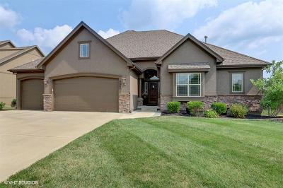 Kansas City MO Single Family Home For Sale: $495,000