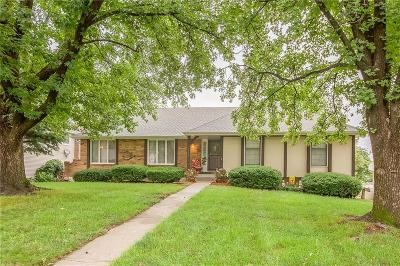 Raytown Single Family Home For Sale: 7713 Irwin Road