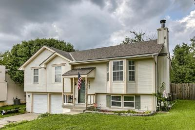 Raymore Single Family Home For Sale: 1700 Roberta Drive