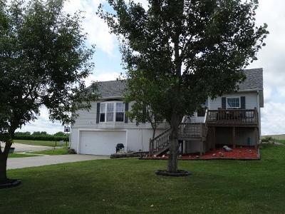 Butler Single Family Home For Sale: 828 S Birch Street