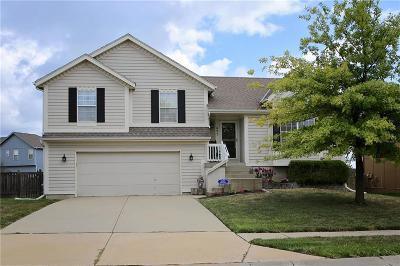 Gardner Single Family Home For Sale: 695 S Evergreen Street