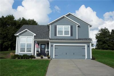 Edwardsville Single Family Home For Sale: 1611 S 104th Terrace
