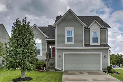 Olathe Single Family Home For Sale: 17876 W 163rd Terrace
