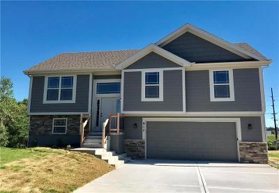 Kearney Single Family Home For Sale: 1103 E 18th Street