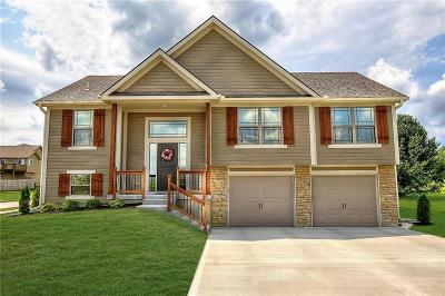 Blue Springs MO Single Family Home Contingent: $258,900