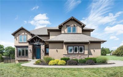 Johnson-KS County Single Family Home For Sale: 7324 Mize Road