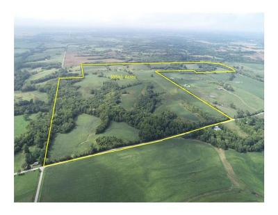 Clinton County Residential Lots & Land For Sale: NE Shikles Road