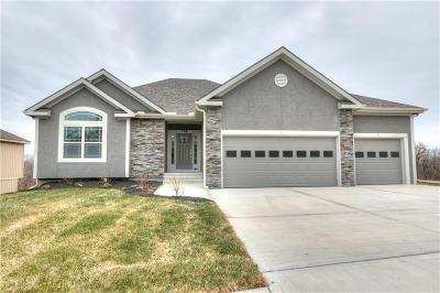 Kearney Single Family Home For Sale: 1808 Sycamore Ridge