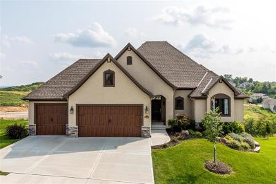 Single Family Home For Sale: 5899 S National Drive