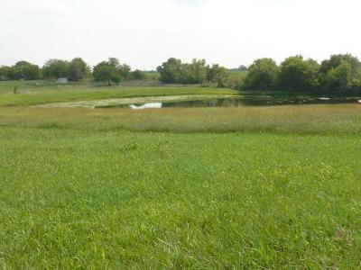 Clinton County Residential Lots & Land For Sale: 1702 N Yes Highway