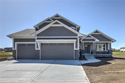 Harrisonville Single Family Home For Sale: 2302 Burris Drive