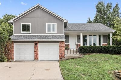 Overland Park Single Family Home Show For Backups: 13287 W 113 Street