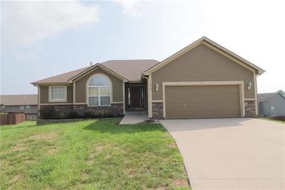 Grain Valley Single Family Home For Sale: 950 NW Birch Court