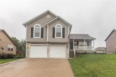 Raymore MO Single Family Home For Sale: $228,500