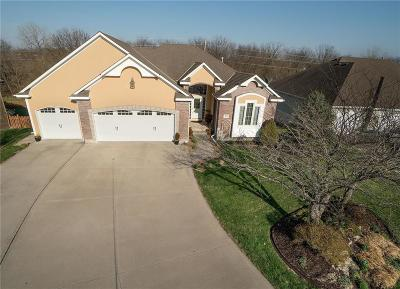 Raymore Single Family Home For Sale: 915 Trailway Drive