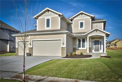 Olathe Single Family Home For Sale: 10789 Race Street