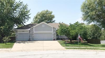 Raymore MO Single Family Home For Sale: $220,000