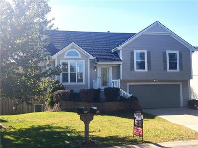Single Family Home For Sale: 18631 W 164th Street