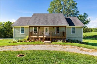 Clinton County Single Family Home For Sale: 1509 Independence Drive