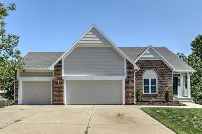 Shawnee Single Family Home For Sale: 4623 Meadow View Drive