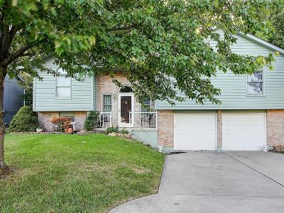 Grain Valley Single Family Home For Sale: 908 SW Foxtail Drive