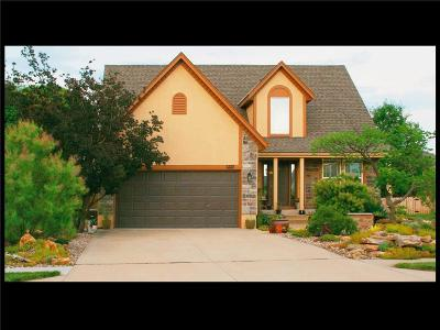 Lee's Summit Single Family Home For Sale: 4407 SW Creekview Drive