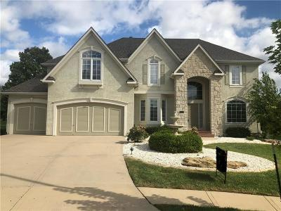 Overland Park Single Family Home For Sale: 6008 W 142nd Street