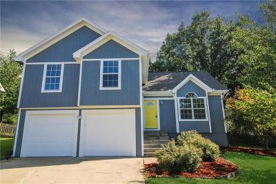 Liberty Single Family Home For Sale: 719 Plum Rose Drive
