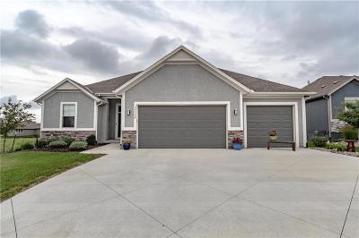 Olathe Single Family Home For Sale: 21738 W 177th Terrace
